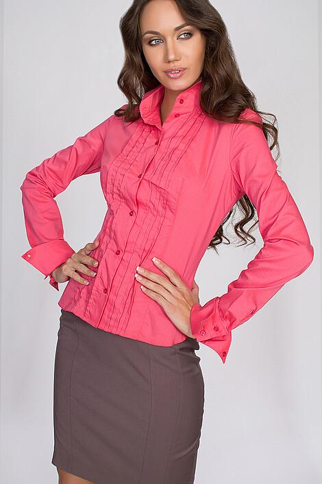 Блуза за 1651 руб.