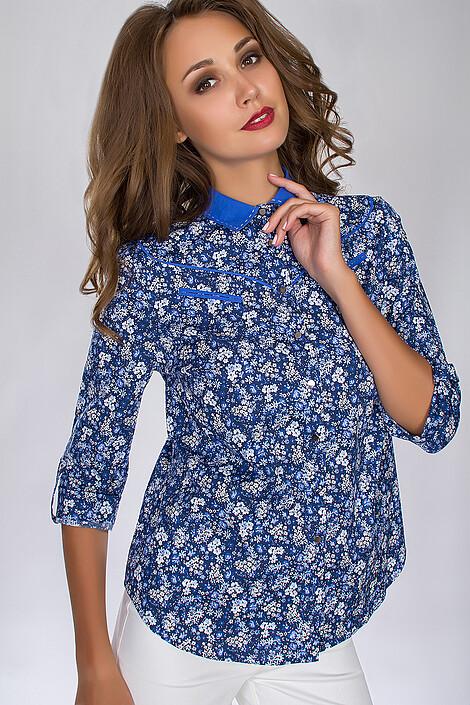Блузка за 2387 руб.