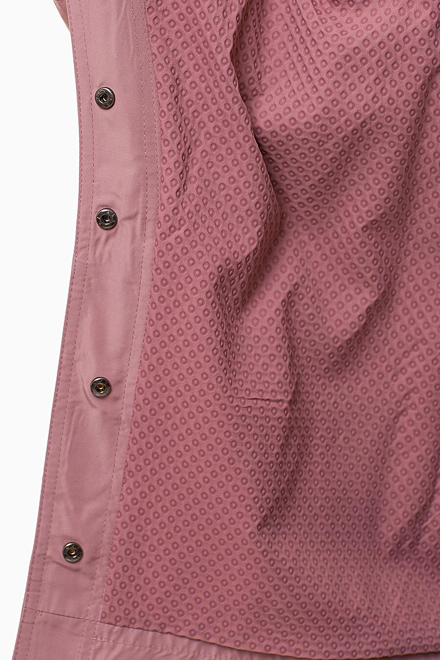 Плащ D'IMMA (109501), купить в Moyo.moda