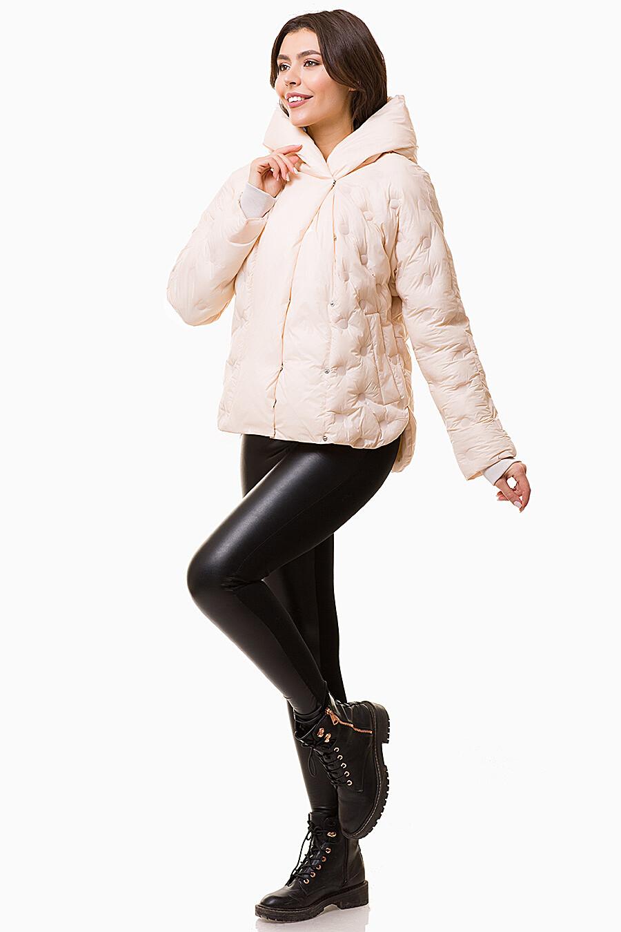 Куртка D'IMMA (109537), купить в Moyo.moda