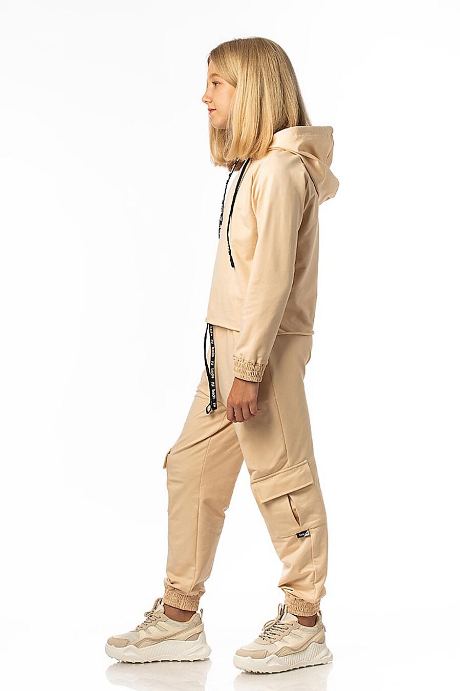 Костюм (Брюки + Джемпер) BODO (226903), купить в Moyo.moda