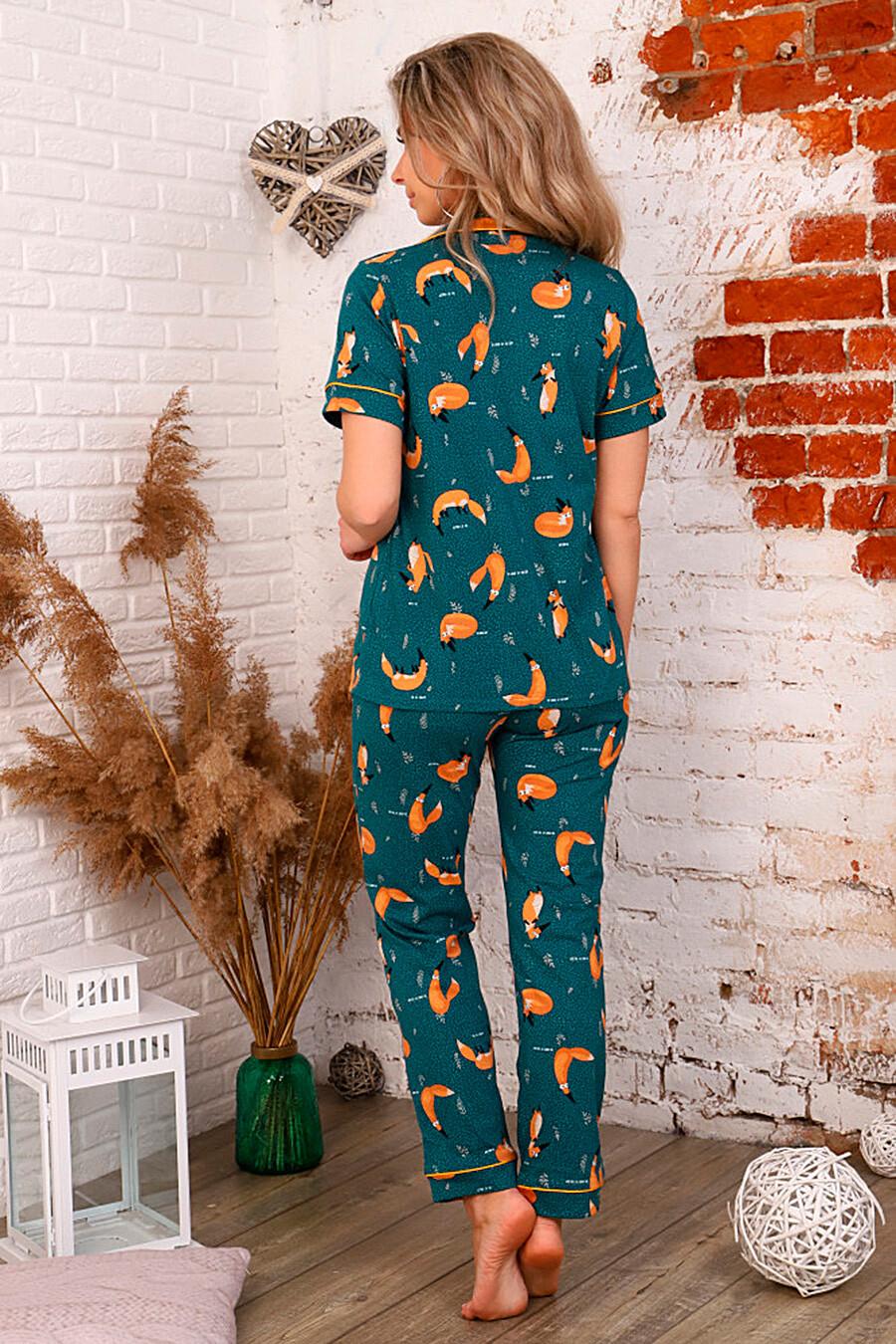 Костюм (Брюки+Рубашка) СОФИЯ37 (335052), купить в Moyo.moda