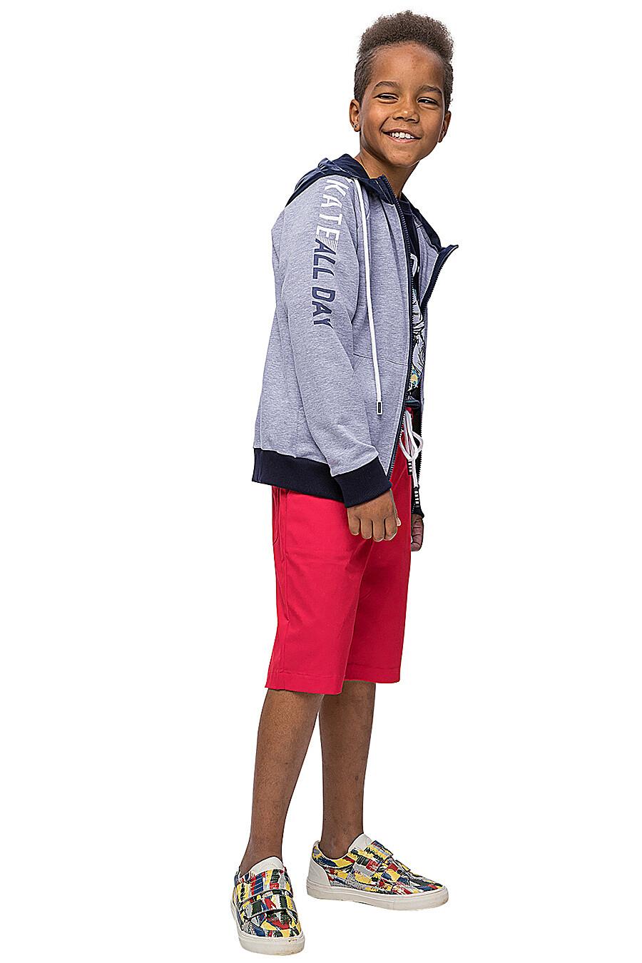 Джемпер КАРАМЕЛЛИ (683384), купить в Moyo.moda