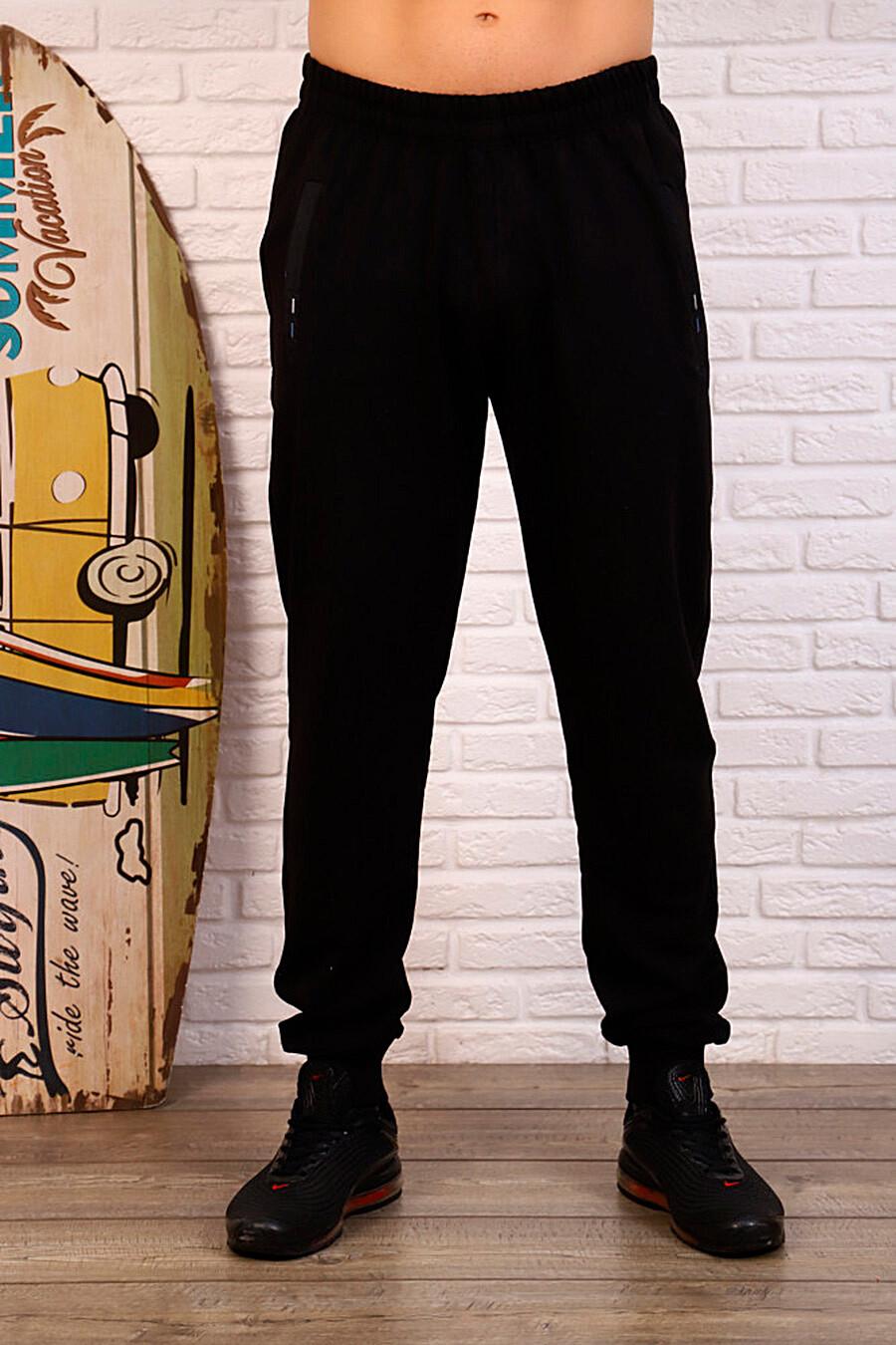 Брюки СОФИЯ37 (335095), купить в Moyo.moda